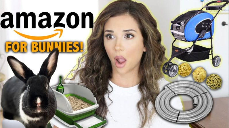Things You Can Buy on AMAZON for Rabbits! (Christmas Shop with Us!)